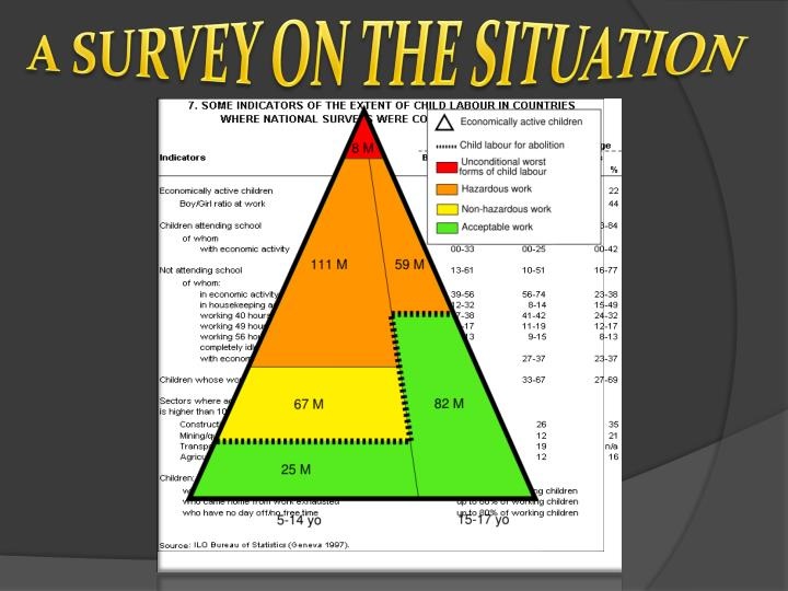 A SURVEY ON THE SITUATION