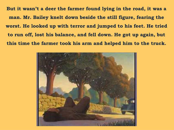 But it wasn't a deer the farmer found lying in the road, it was a man. Mr. Bailey knelt down besid...