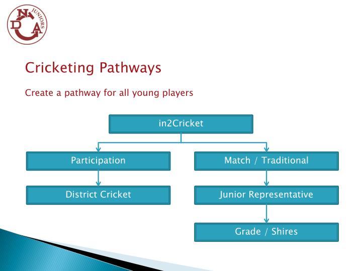 Cricketing Pathways