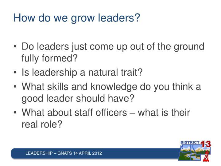 How do we grow leaders?