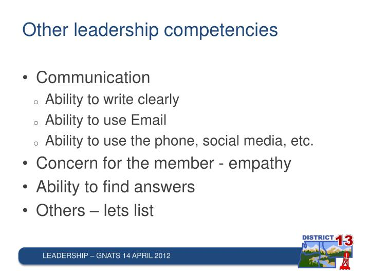 Other leadership competencies