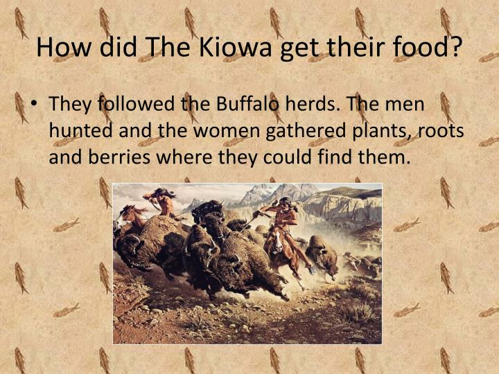 How did the kiowa get their food