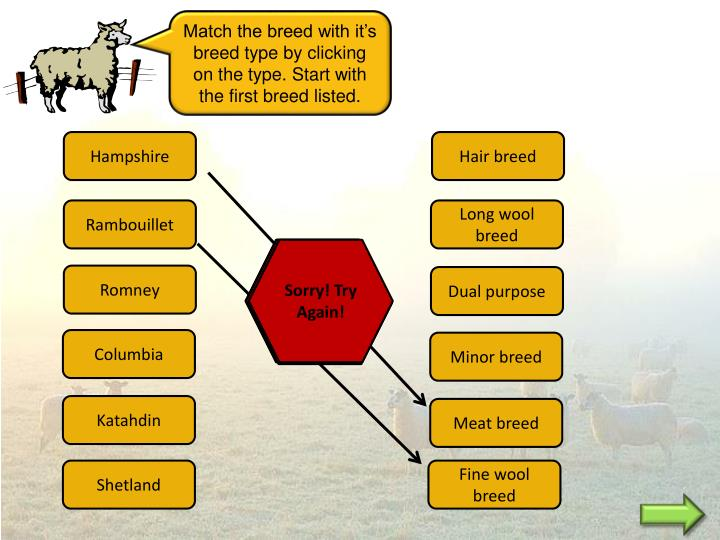 Match the breed with it's breed type by clicking on the type. Start with the first breed listed.