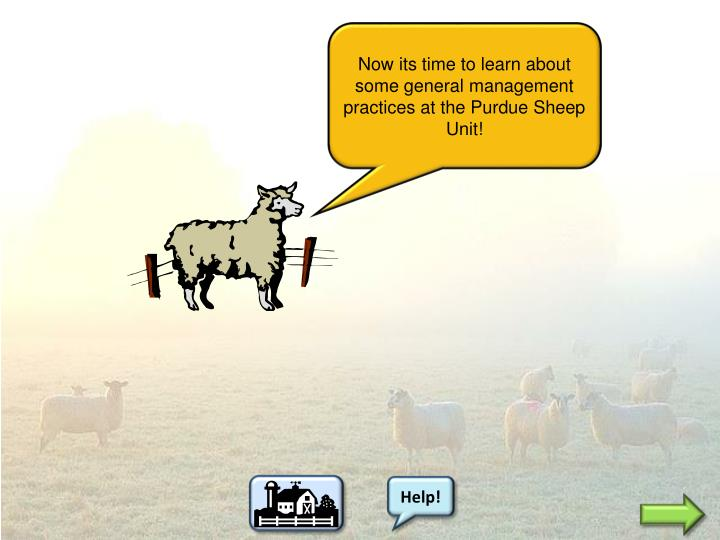 Now its time to learn about some general management practices at the Purdue Sheep Unit!