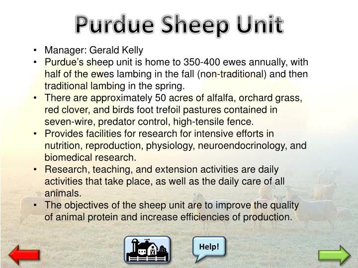 Purdue Sheep Unit
