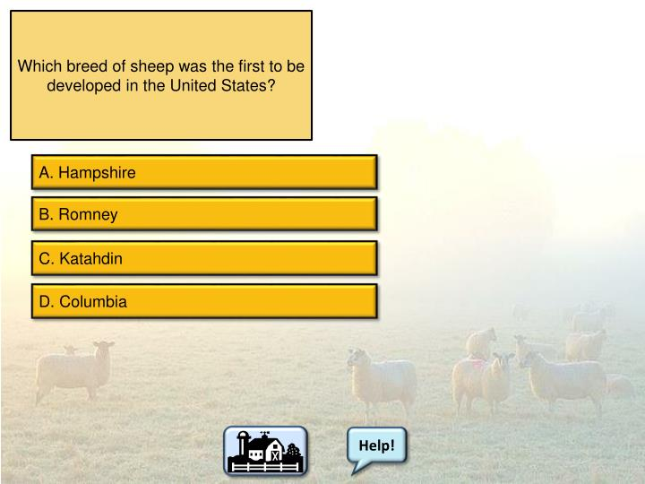 Which breed of sheep was the first to be developed in the United States?