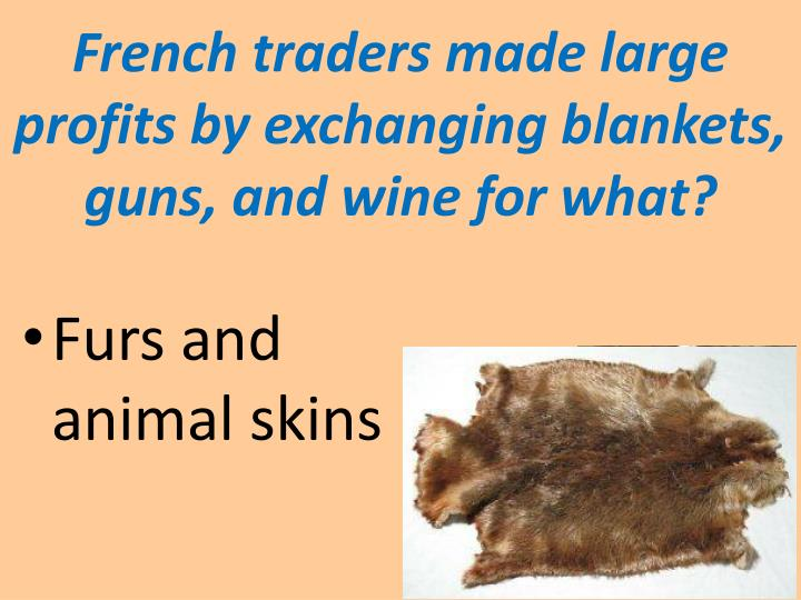 French traders made large profits by exchanging blankets, guns, and wine for what?