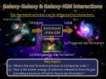 galaxy galaxy galaxy igm interactions