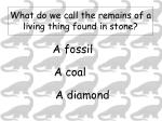 what do we call the remains of a living thing found in stone