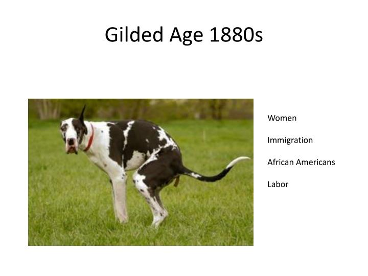 Gilded Age 1880s