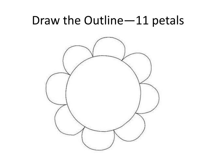 draw the outline 11 petals n.