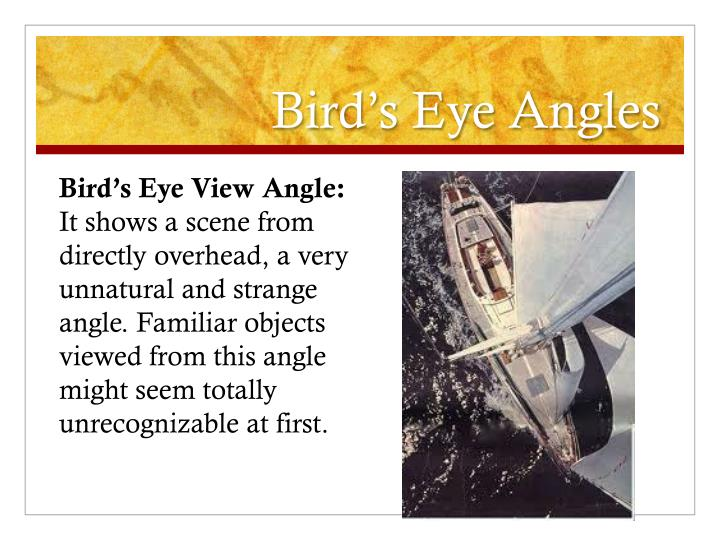 Bird's Eye Angles