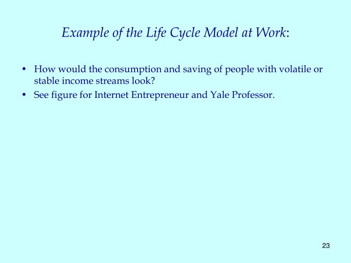 Example of the Life Cycle Model at Work