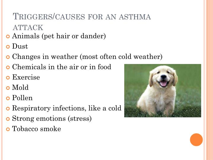Triggers/causes for an asthma attack