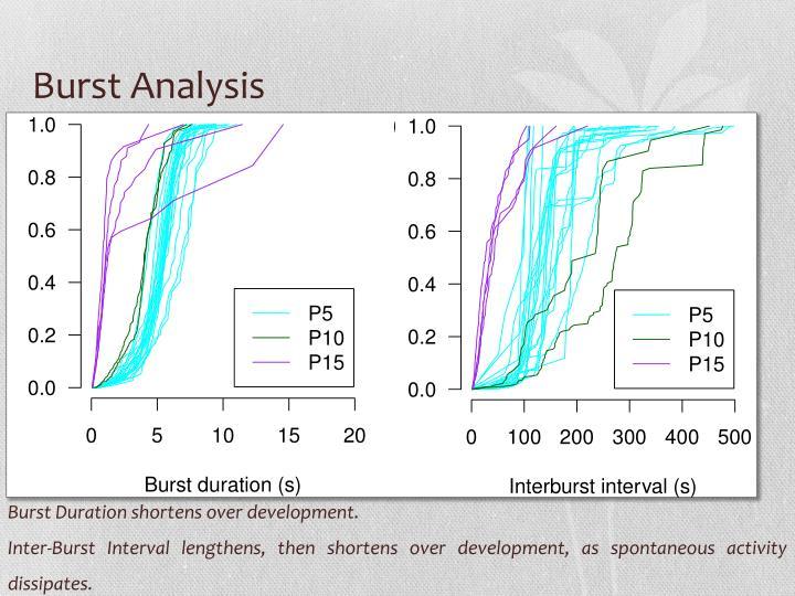 Burst Analysis