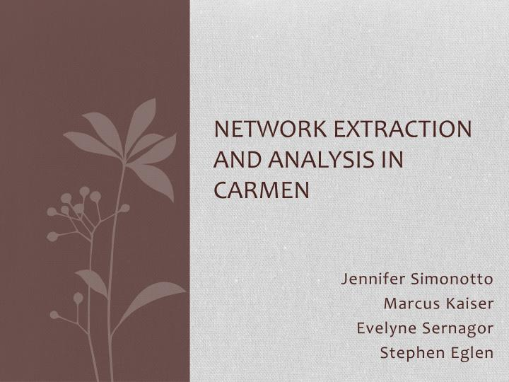 Network extraction and analysis in carmen