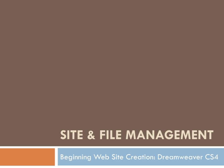 site file management n.