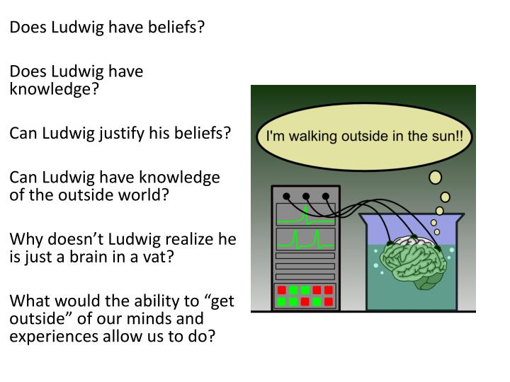 Does Ludwig have beliefs?
