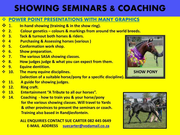 Showing seminars coaching