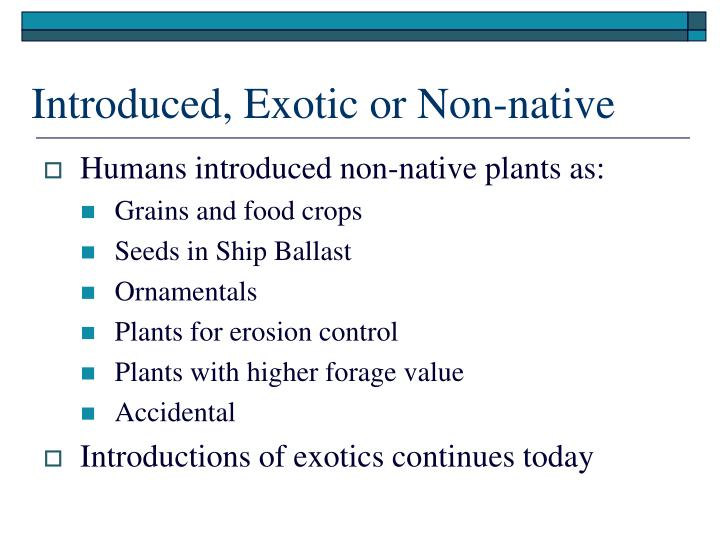 Introduced, Exotic or Non-native