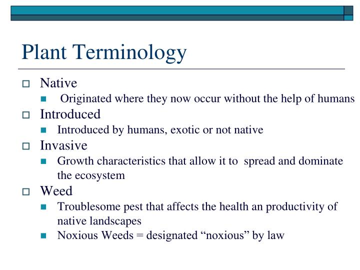 Plant Terminology