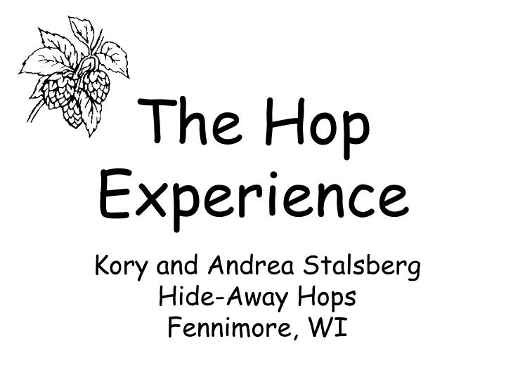 the hop experience n.