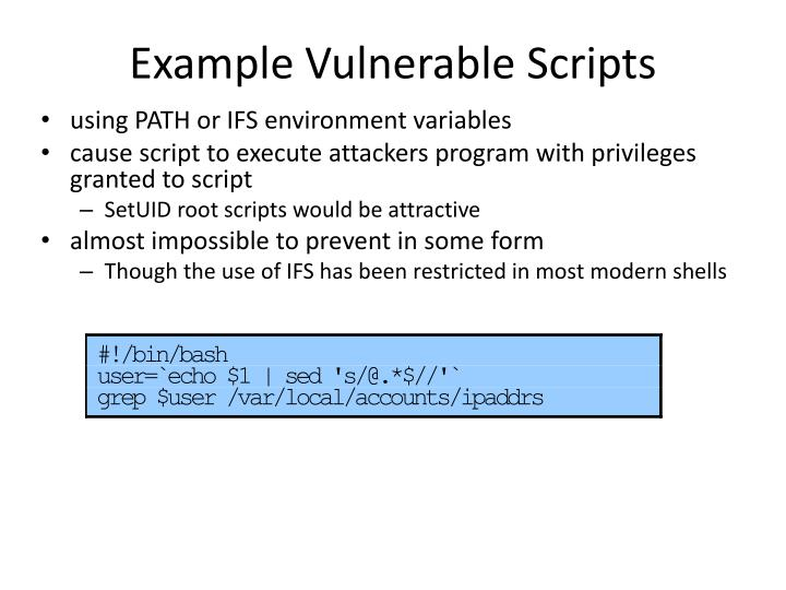 Example Vulnerable Scripts