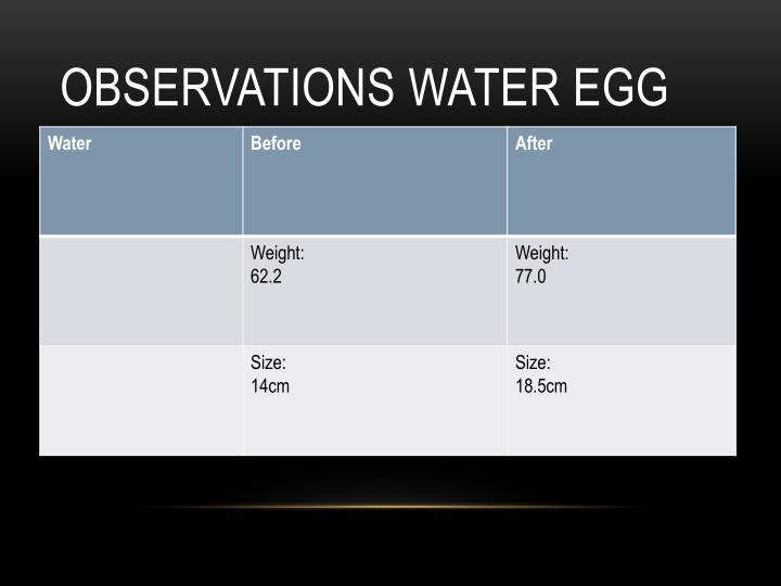Observations Water Egg