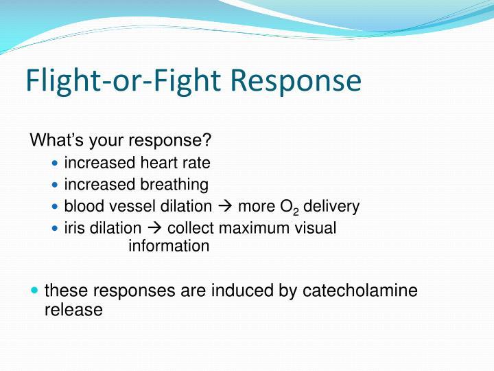 Flight-or-Fight Response
