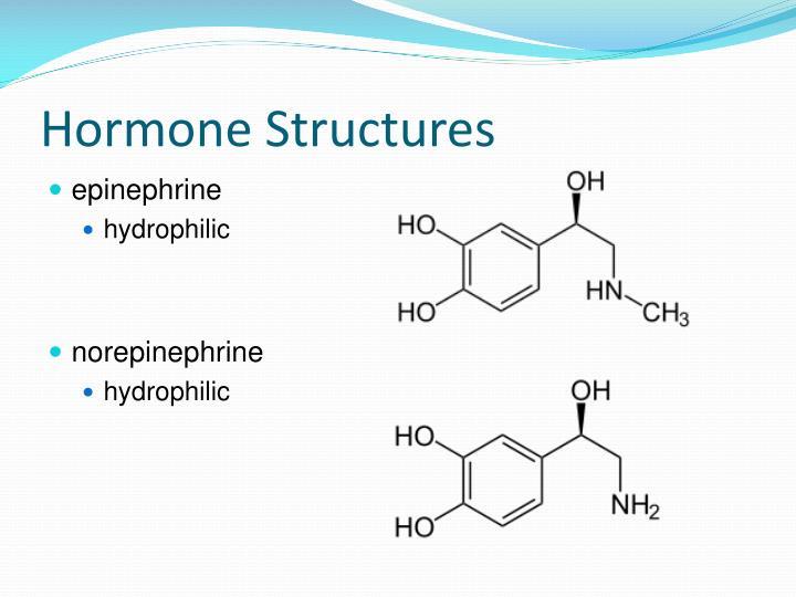 Hormone Structures