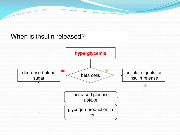 When is insulin released?  after eating