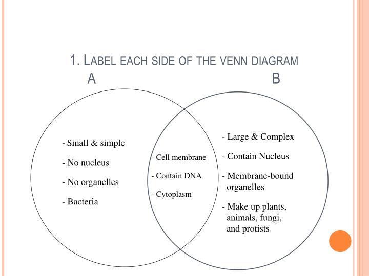 1. Label each side of the venn diagram