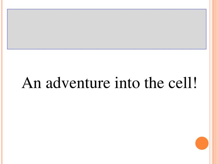 An adventure into the cell!