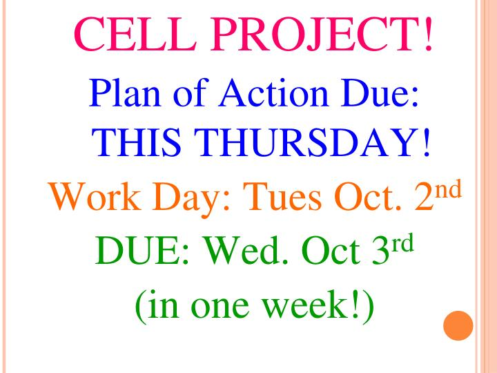 CELL PROJECT!