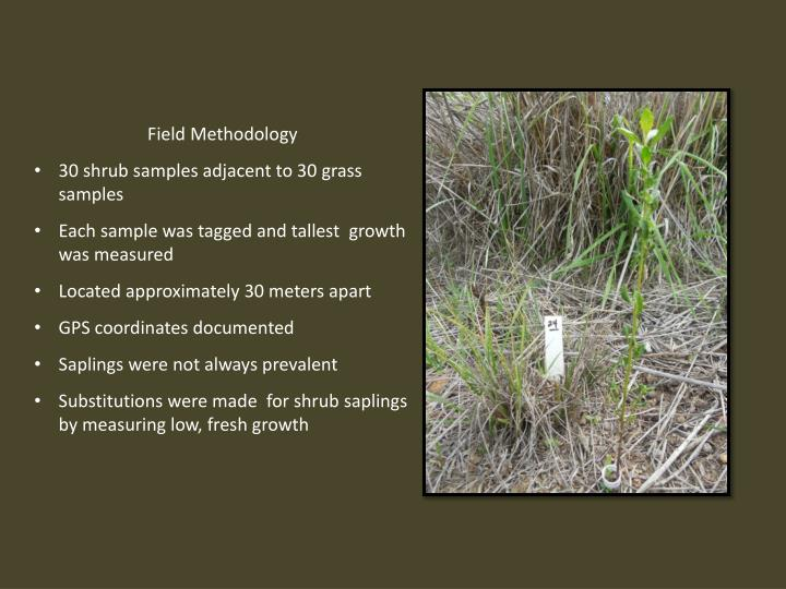 Field Methodology