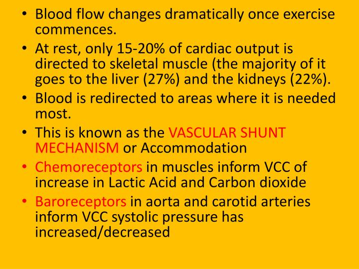 Blood flow changes dramatically once exercise commences.