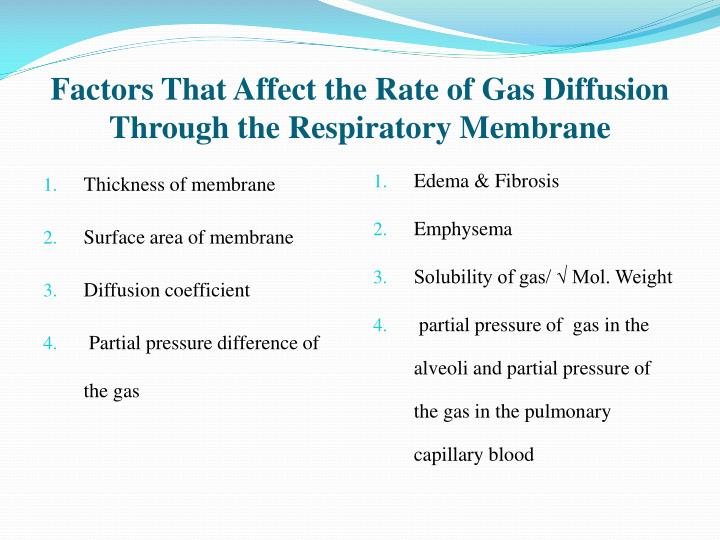 Factors That Affect the Rate of Gas Diffusion Through the Respiratory Membrane
