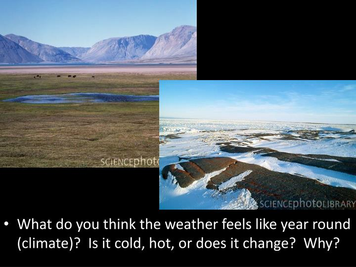 What do you think the weather feels like year round (climate)?  Is it cold, hot, or does it change? ...