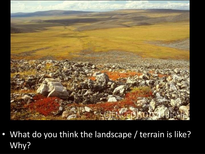 What do you think the landscape / terrain is like?  Why?