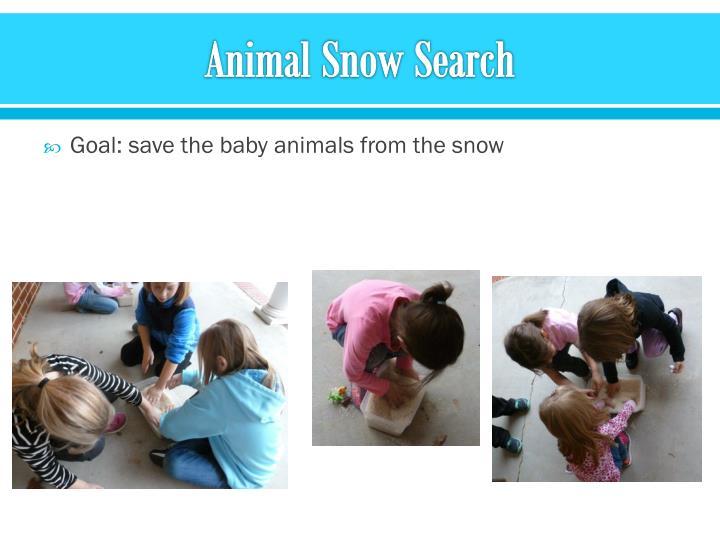 Animal Snow Search