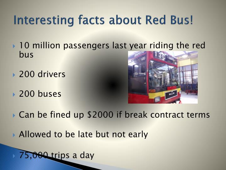 Interesting facts about red bus