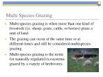 multi species grazing1