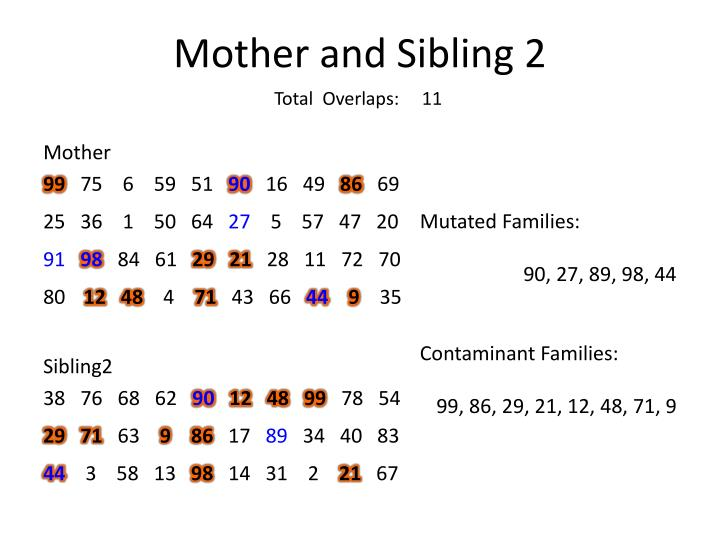 Mother and Sibling 2