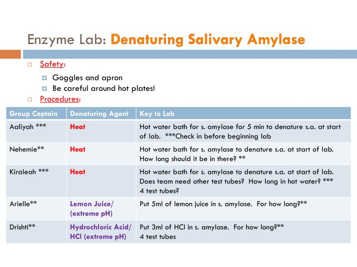 Enzyme Lab: