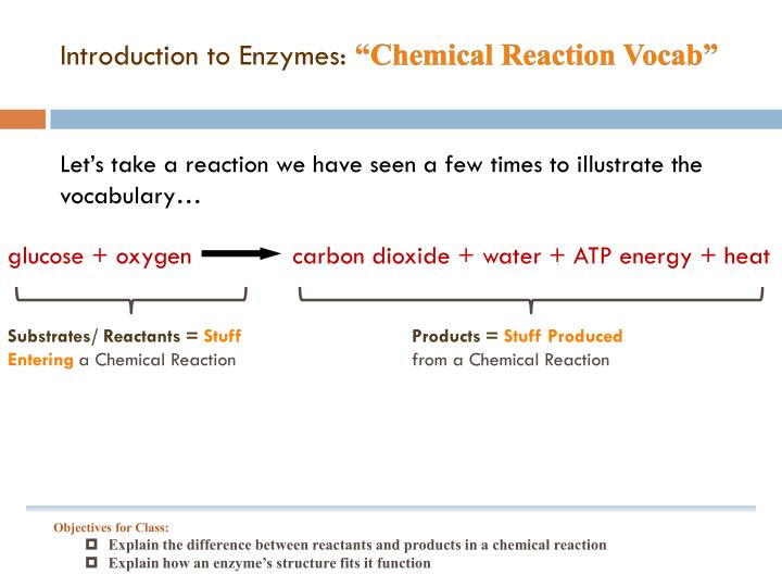 Introduction to Enzymes: