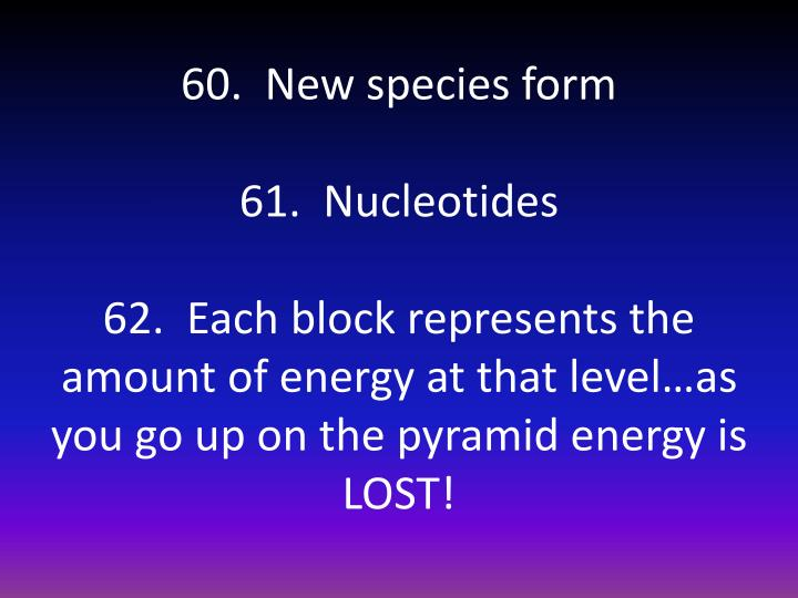 60.  New species form
