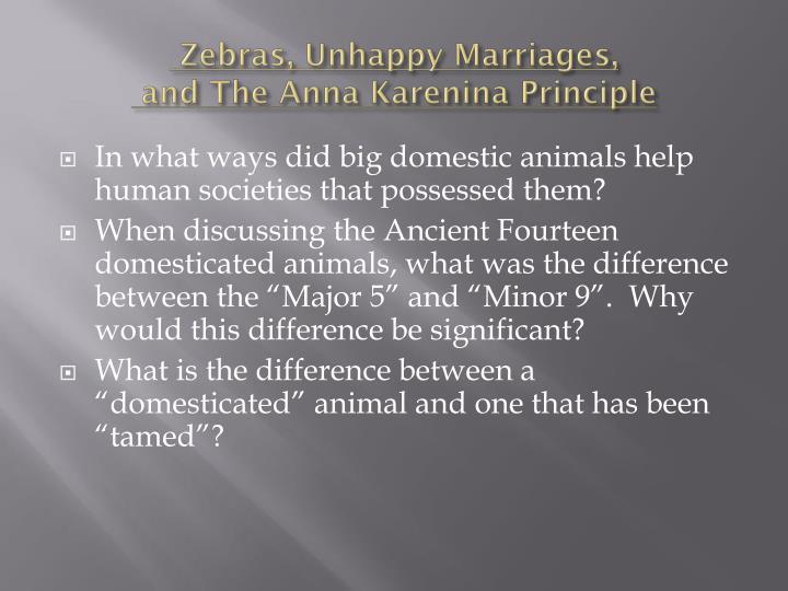 Zebras, Unhappy Marriages,