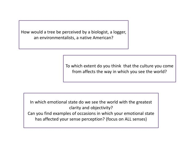 How would a tree be perceived by a biologist, a logger, an environmentalists, a native American?
