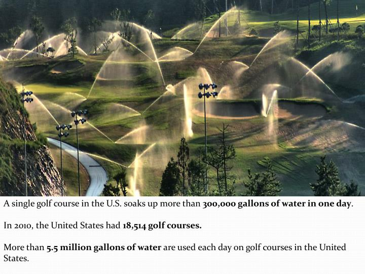 A single golf course in the U.S. soaks up more than