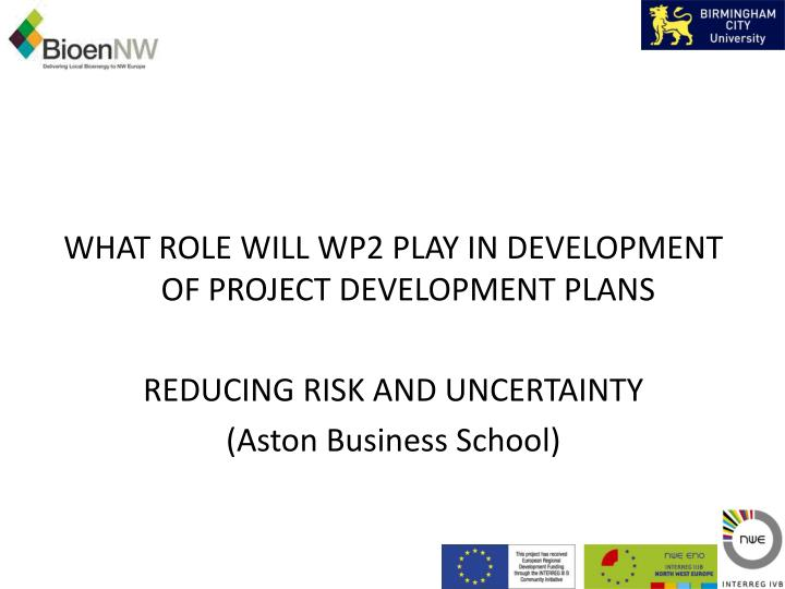 WHAT ROLE WILL WP2 PLAY IN DEVELOPMENT OF PROJECT DEVELOPMENT PLANS